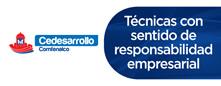 CeDesarrollo - Técnicos con sentido de responsabilidad empresarial.